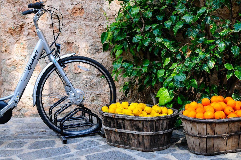 cycling tour majorca